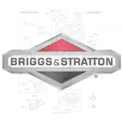 Ricambi Briggs & Stratton